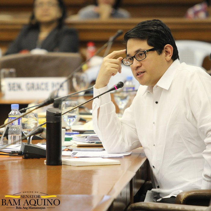Sen. Bam Supports Calls for Special Audit of DAP